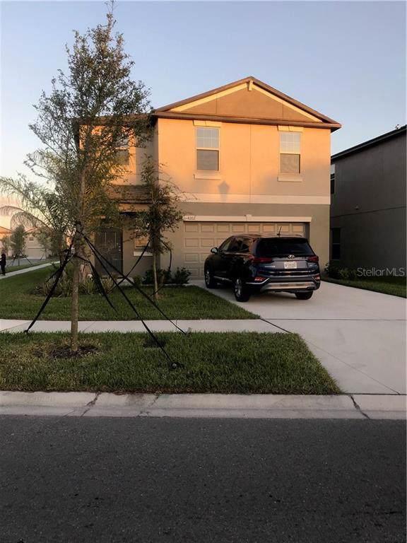 4202 Wild Senna Boulevard, Tampa, FL 33619 (MLS #T3220820) :: Keller Williams Realty Peace River Partners
