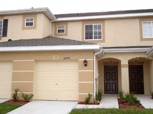 20442 Needletree Drive, Tampa, FL 33647 (MLS #T3221229) :: CENTURY 21 OneBlue