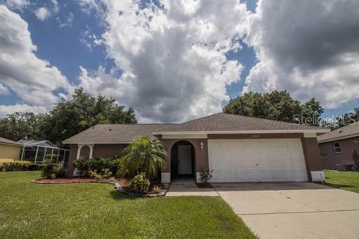 19607 Wyndmill Circle, Odessa, FL 33556 (MLS #T3221278) :: Team Bohannon Keller Williams, Tampa Properties