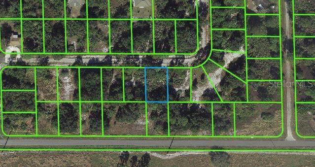 106 Edenwald Avenue, Lake Placid, FL 33852 (MLS #T3221646) :: 54 Realty