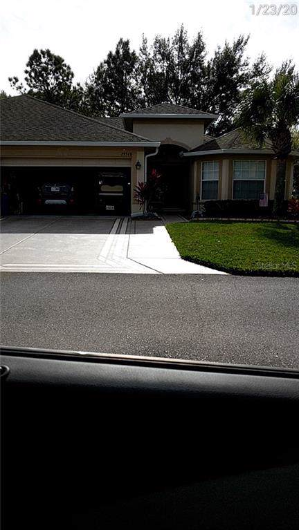 29548 Fade Court, San Antonio, FL 33576 (MLS #T3221789) :: McConnell and Associates