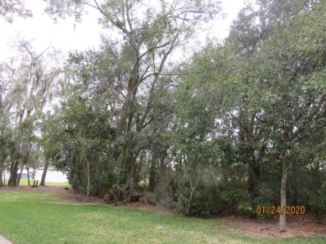 Lake Drive S, Mulberry, FL 33860 (MLS #T3222193) :: Delgado Home Team at Keller Williams