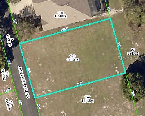 5444 Chestnut Ridge Road, Dade City, FL 33523 (MLS #T3222227) :: Team Pepka