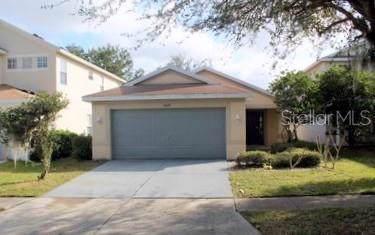 11628 Crest Creek Drive, Riverview, FL 33569 (MLS #T3222254) :: Griffin Group