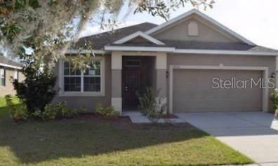 14310 Alistar Manor Drive, Wimauma, FL 33598 (MLS #T3222502) :: Team Bohannon Keller Williams, Tampa Properties
