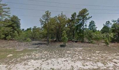 7 Greenpark Boulevard, Homosassa, FL 34446 (MLS #T3222691) :: GO Realty