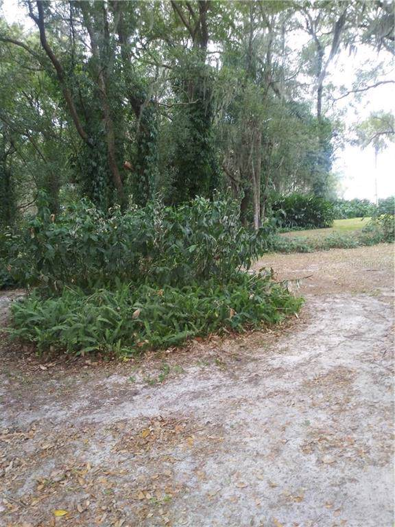 Joe Herman Joe Herman, San Antonio, FL 33576 (MLS #T3223152) :: Premier Home Experts