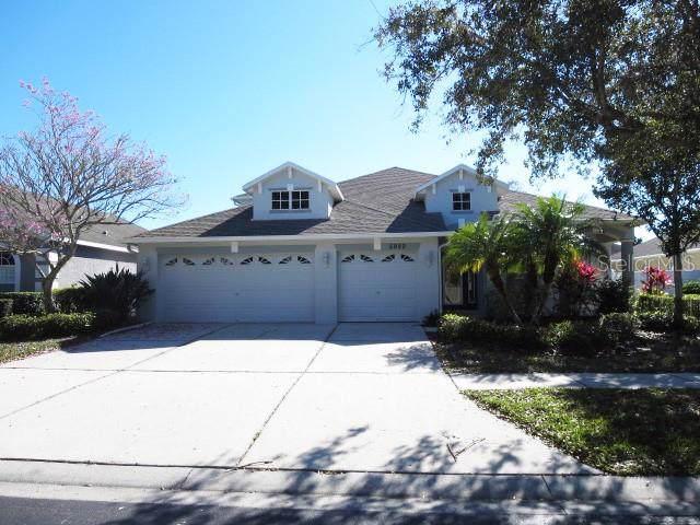 5920 Browder Road, Tampa, FL 33625 (MLS #T3223320) :: Pristine Properties