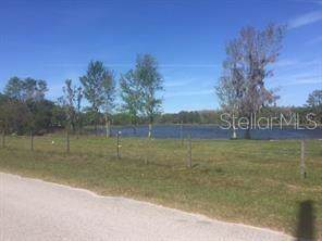 0 Bexley Road, Land O Lakes, FL 34638 (MLS #T3223431) :: The Light Team