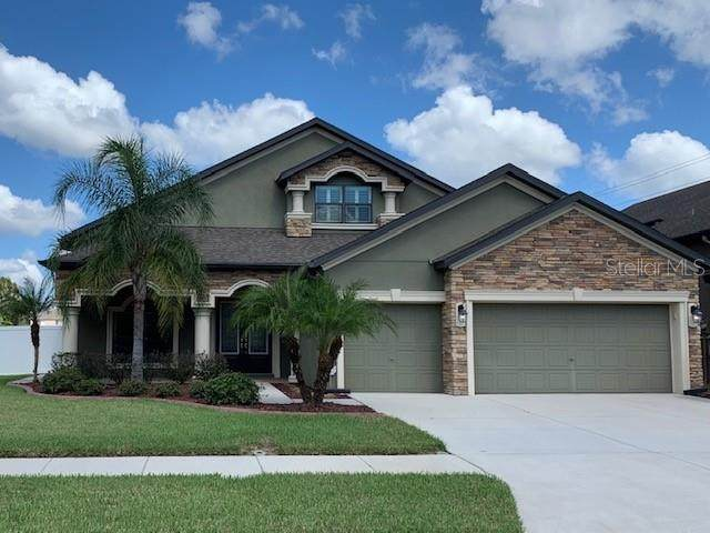 3514 Starling Estates Court, Valrico, FL 33596 (MLS #T3226234) :: Dalton Wade Real Estate Group