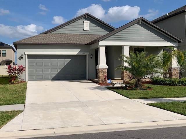 13906 Roseate Tern Lane, Riverview, FL 33579 (MLS #T3226359) :: Griffin Group