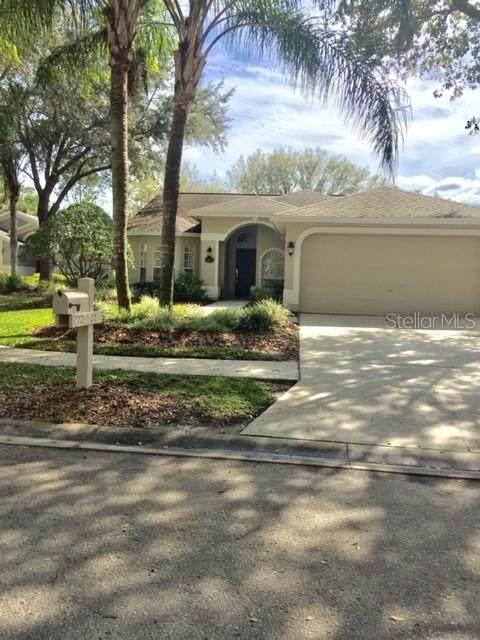 17765 Oak Bridge Street, Tampa, FL 33647 (MLS #T3226367) :: 54 Realty