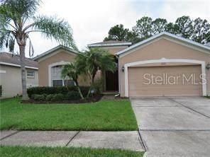 19144 Meadow Pine Drive, Tampa, FL 33647 (MLS #T3226463) :: Team Bohannon Keller Williams, Tampa Properties