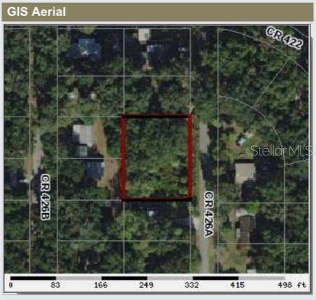 2880 Cr 426A, Lake Panasoffkee, FL 33538 (MLS #T3227150) :: The Light Team