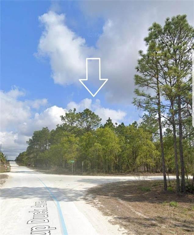 15466 Scaup Duck Avenue, Weeki Wachee, FL 34614 (MLS #T3227219) :: Homepride Realty Services