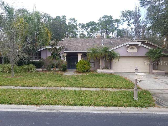 160 Greenhaven Circle, Oldsmar, FL 34677 (MLS #T3227342) :: Premium Properties Real Estate Services
