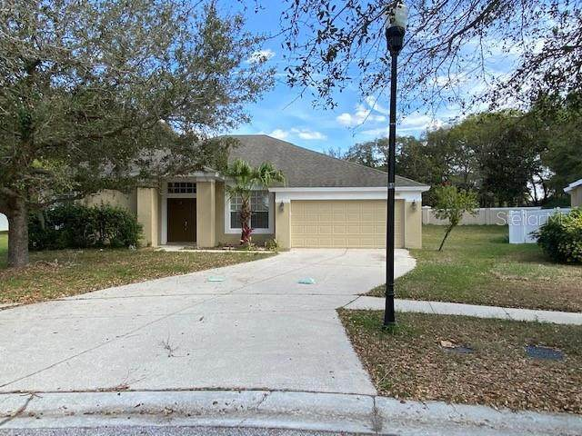 1605 Deep Well Court, Valrico, FL 33594 (MLS #T3227487) :: The Nathan Bangs Group