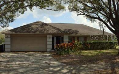 1411 Midoneck Court, Valrico, FL 33596 (MLS #T3227527) :: The Nathan Bangs Group