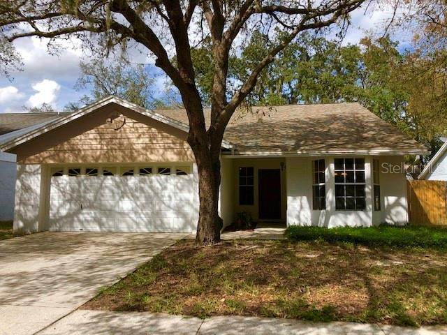 2616 Shilo Court, Valrico, FL 33596 (MLS #T3227545) :: The Nathan Bangs Group