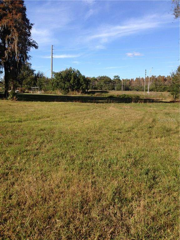 2400 Evergreen Lane, Lutz, FL 33558 (MLS #T3228467) :: Delta Realty Int