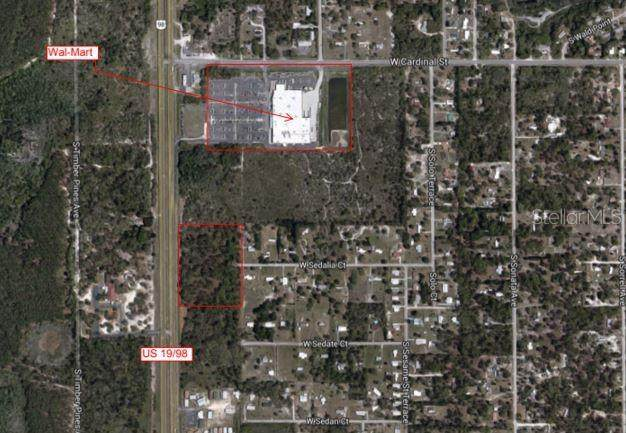 7047 S Suncoast Boulevard, Homosassa, FL 34446 (MLS #T3228839) :: The Light Team