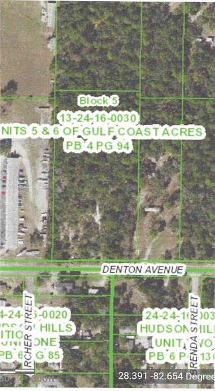 Denton, Hudson, FL 34667 (MLS #T3230782) :: McConnell and Associates