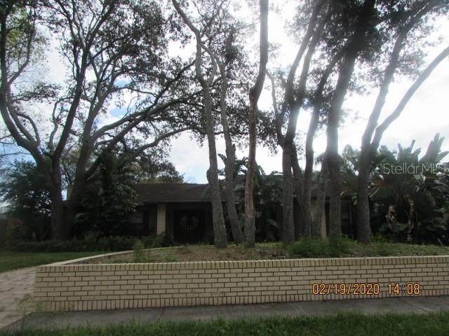915 Terra Mar Drive, Tampa, FL 33613 (MLS #T3231083) :: Griffin Group