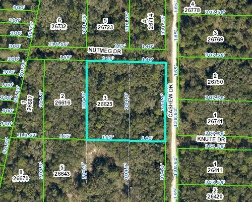 Nutmeg Drive, Webster, FL 33597 (MLS #T3232736) :: Icon Premium Realty