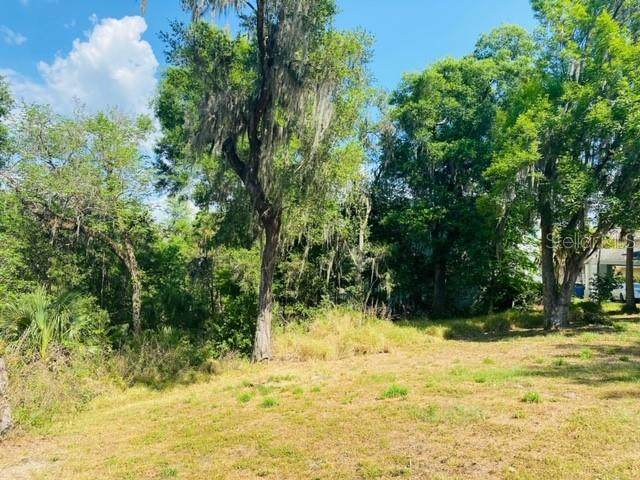 13112 Waterford Run Drive, Riverview, FL 33569 (MLS #T3233519) :: Carmena and Associates Realty Group