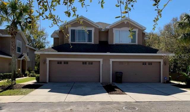 6302 Parkside Meadow Drive, Tampa, FL 33625 (MLS #T3233740) :: Team Bohannon Keller Williams, Tampa Properties