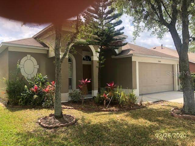 27643 Sky Lake Circle, Wesley Chapel, FL 33544 (MLS #T3234086) :: Florida Real Estate Sellers at Keller Williams Realty
