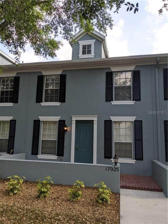 17025 Dorman Road, Lithia, FL 33547 (MLS #T3234395) :: The Brenda Wade Team