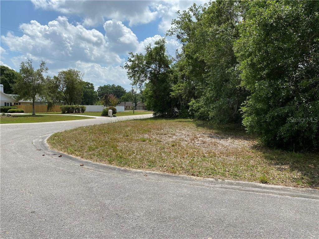 11904 Sugarberry Drive - Photo 1