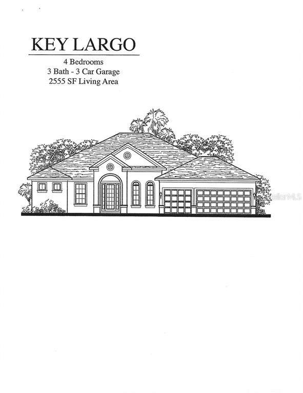 4111 Aladar Court, Land O Lakes, FL 34639 (MLS #T3234866) :: Griffin Group