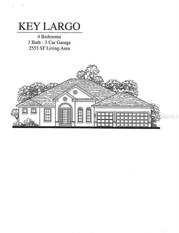 23212 Gracewood Circle, Land O Lakes, FL 34639 (MLS #T3234885) :: Griffin Group