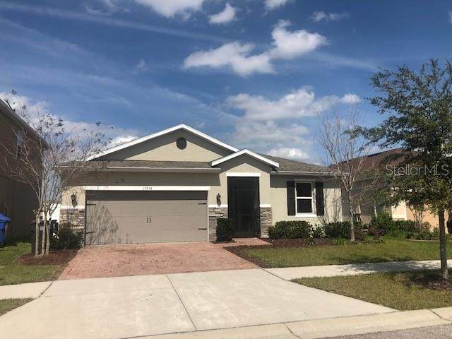 11514 Luckygem Drive, Riverview, FL 33579 (MLS #T3236057) :: Gate Arty & the Group - Keller Williams Realty Smart