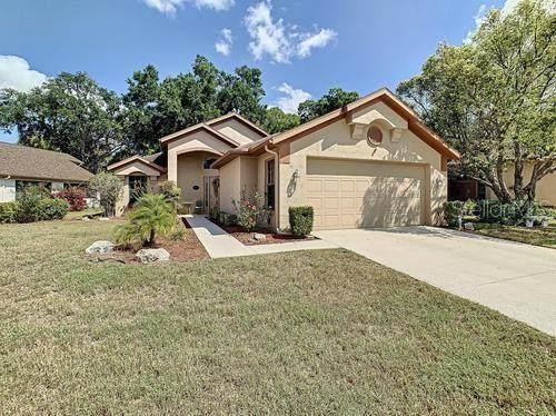 9151 Haas Drive, Hudson, FL 34669 (MLS #T3236302) :: Your Florida House Team
