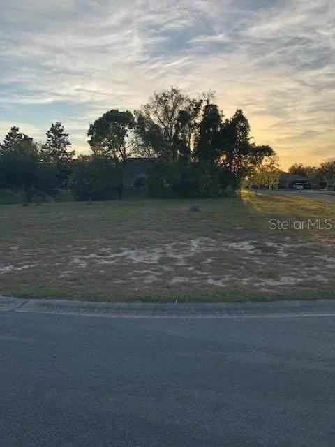 10284 Sevenleaf Drive, Spring Hill, FL 34608 (MLS #T3236644) :: EXIT King Realty