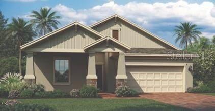 828 Carmillion Court, Groveland, FL 34736 (MLS #T3237646) :: Burwell Real Estate