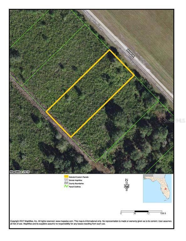 Miami Drive, Indian Lake Estates, FL 33855 (MLS #T3240425) :: Griffin Group