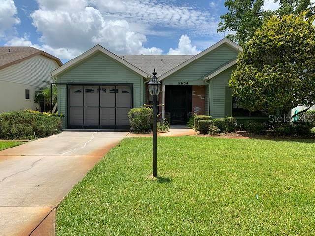11604 Scotch Pine Drive, New Port Richey, FL 34654 (MLS #T3243510) :: Team Buky
