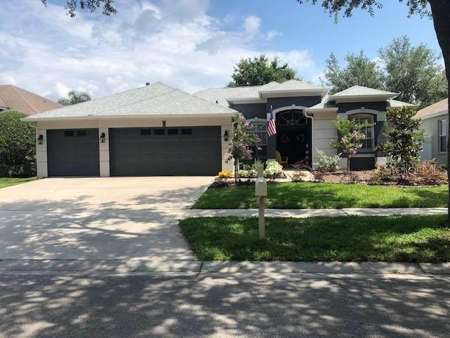 18167 Heron Walk Drive, Tampa, FL 33647 (MLS #T3243766) :: Team Bohannon Keller Williams, Tampa Properties