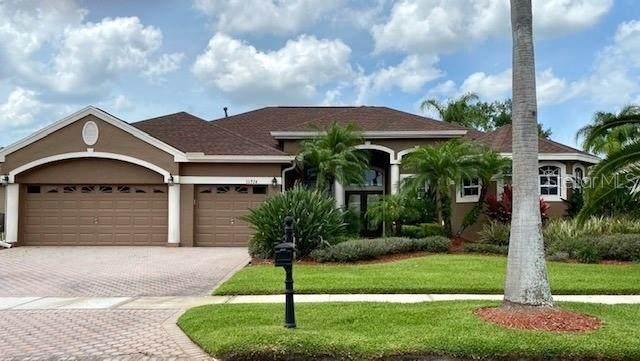 11924 Keating Drive, Tampa, FL 33626 (MLS #T3244188) :: Lucido Global