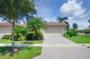 16272 Amethyst Key Drive, Wimauma, FL 33598 (MLS #T3244597) :: Pepine Realty
