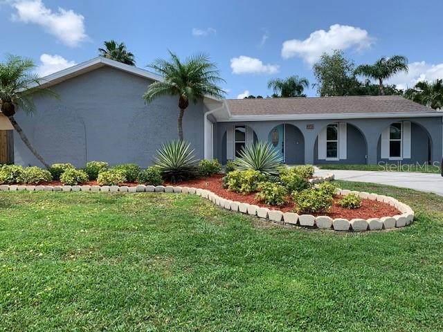 220 N Bay Hills Boulevard, Safety Harbor, FL 34695 (MLS #T3244680) :: Gate Arty & the Group - Keller Williams Realty Smart