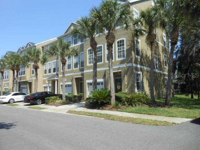 3008 Bayshore Pointe Drive, Tampa, FL 33611 (MLS #T3244707) :: Medway Realty