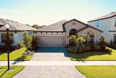13133 Monach Isles Drive, Riverview, FL 33579 (MLS #T3244897) :: Lockhart & Walseth Team, Realtors