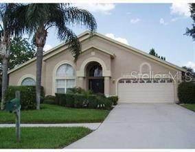 811 Sand Ridge Drive, Valrico, FL 33594 (MLS #T3245575) :: The Figueroa Team