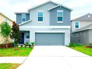 17120 Yellow Pine Street, Wimauma, FL 33598 (MLS #T3245941) :: The Figueroa Team