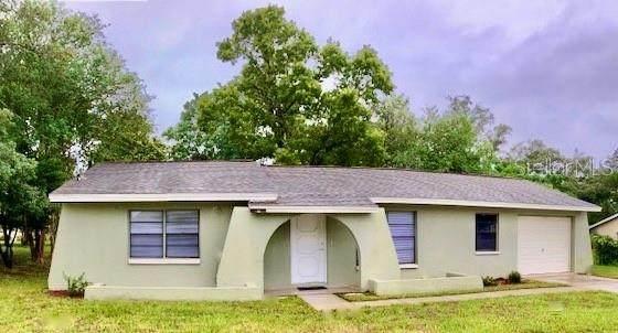 2213 Mariner Boulevard, Spring Hill, FL 34609 (MLS #T3246593) :: EXIT King Realty